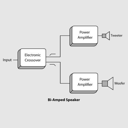 Bi-Amped_vector_edited.jpg